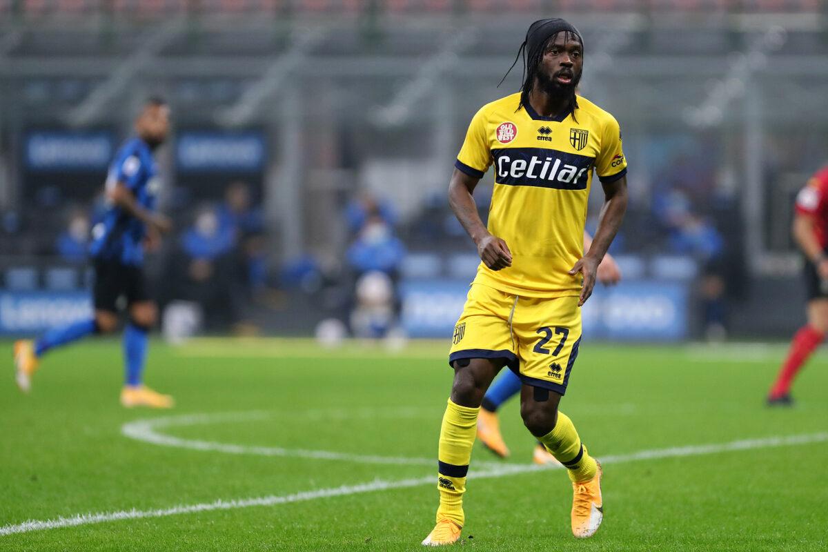 Gervinho, attaccante Parma